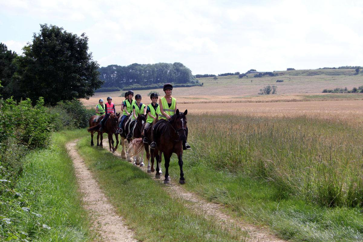 Hacking in the Lincolnshire Wolds